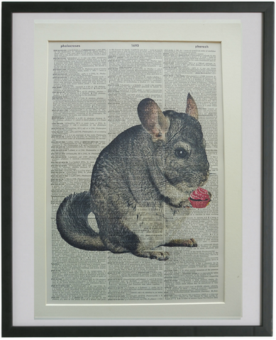 Chinchilla Print No.806, animals