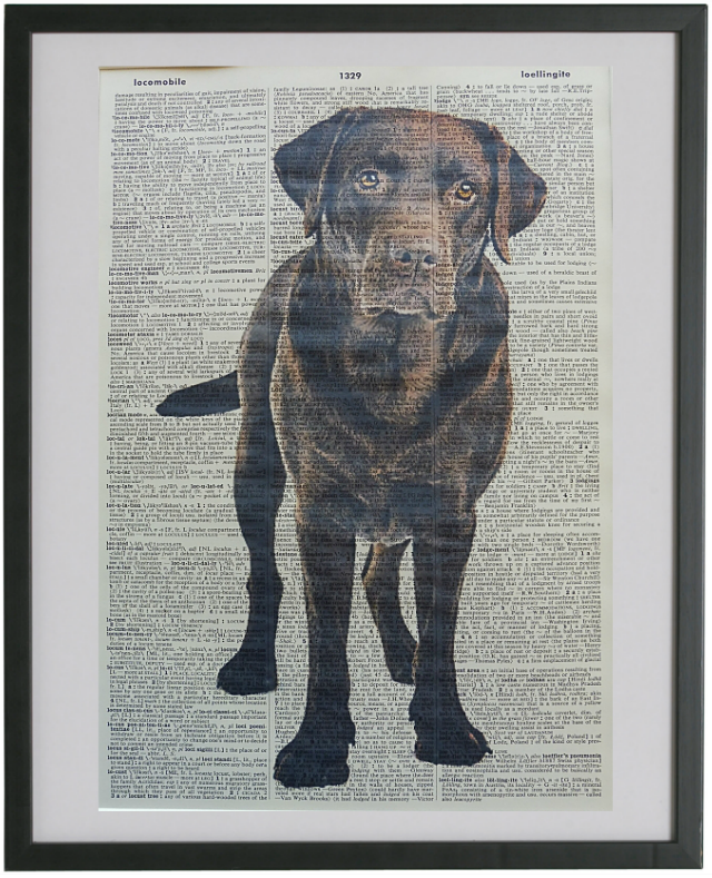 Labrador Dog Print No.598