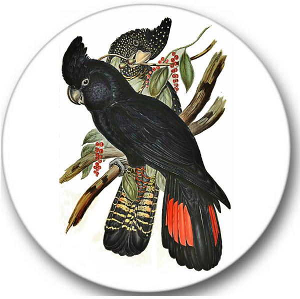 Cockatoo Black Sticker Seals No.449, bird prints