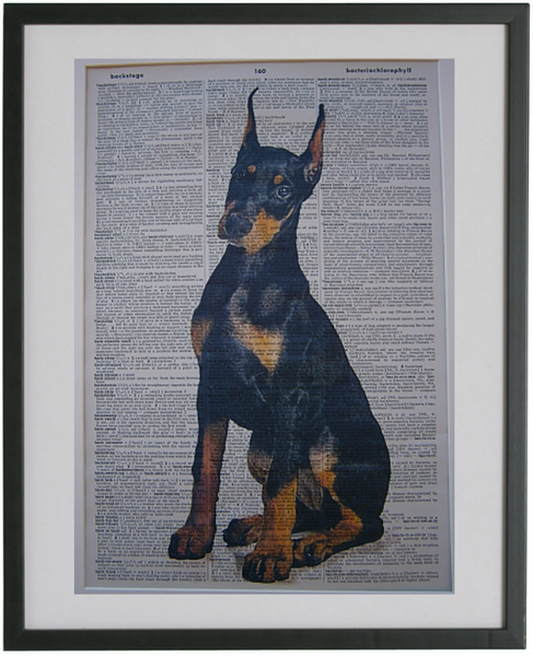 Doberman Dog Print No.65
