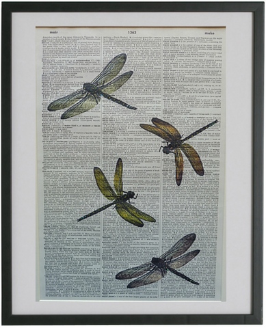 Dragonfly Print No.540, botanical