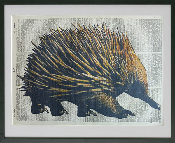 Echidna Print No.550, animals