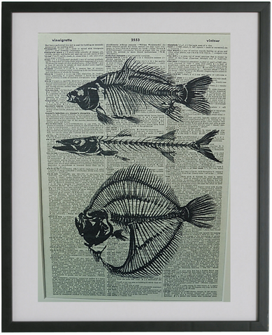Fish Skeleton Print No.315