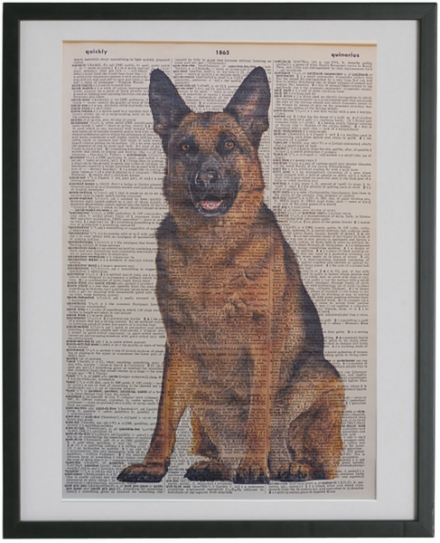 German Shepherd Dog #2 Wall Print No.404