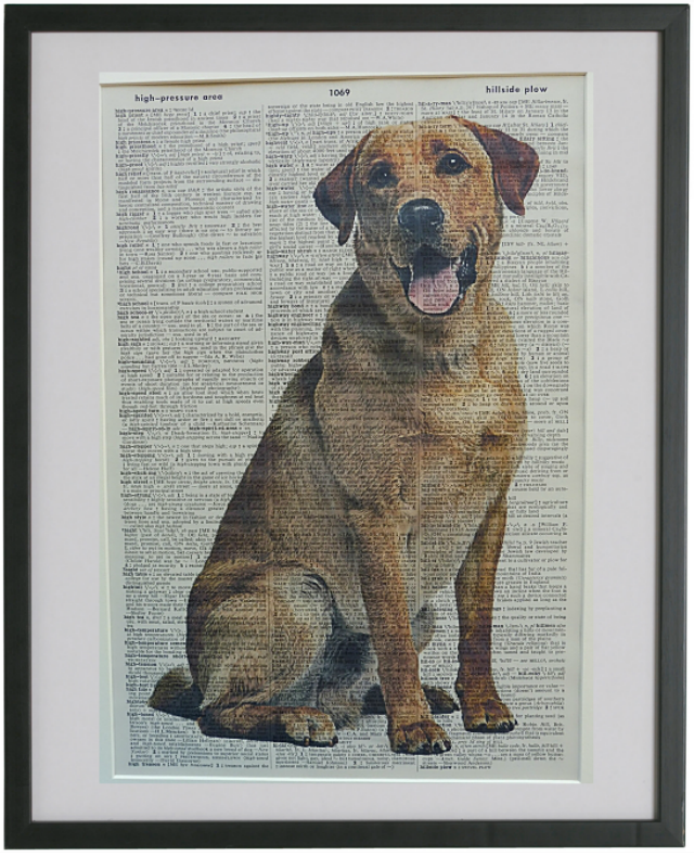 Labrador Golden Dog #1 Wall Print No.593