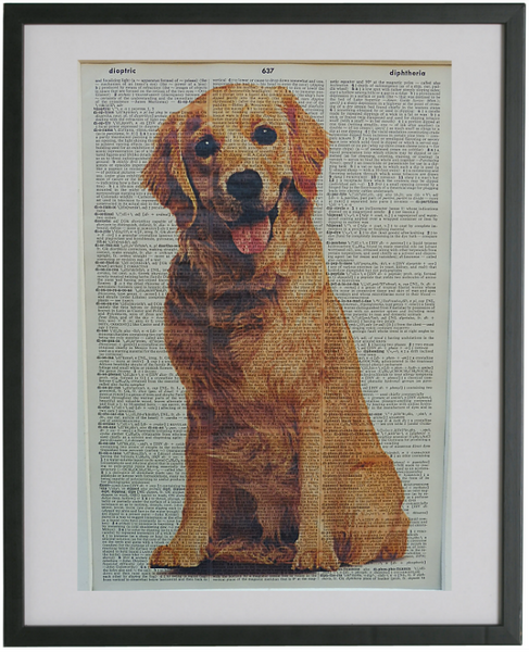 Golden Retriever Dog #1 Wall Print No.477