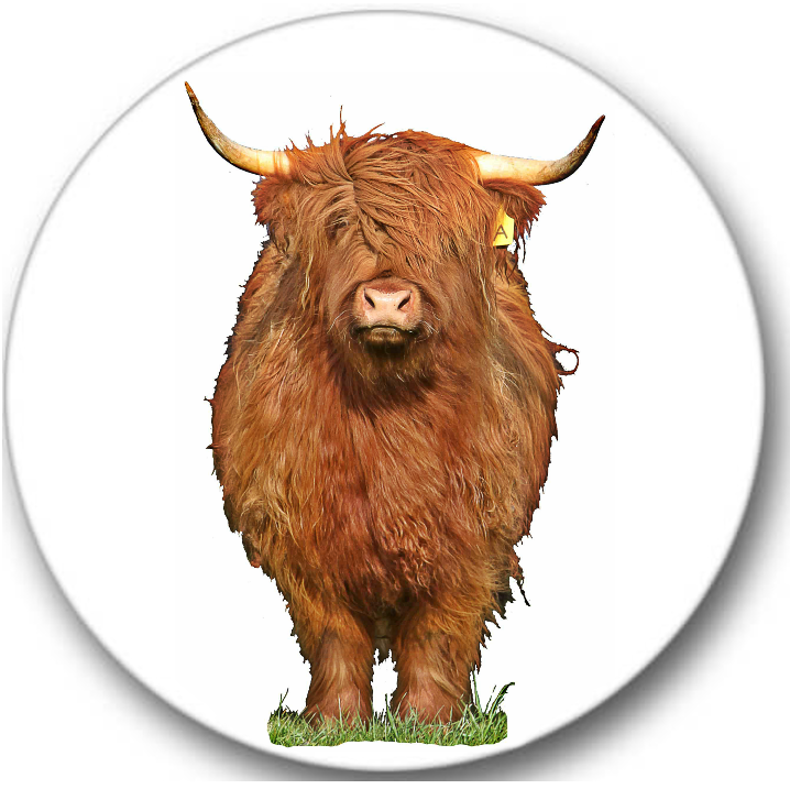 Highland Cow #1 Sticker Seals No.272, animals