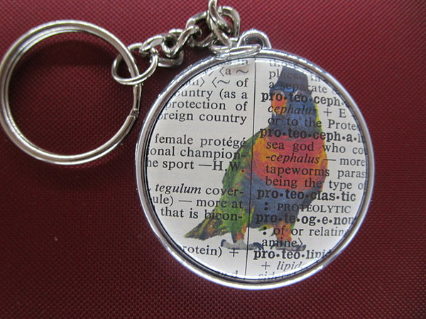 Rainbow Lorikeet Keyring No.442, bird print