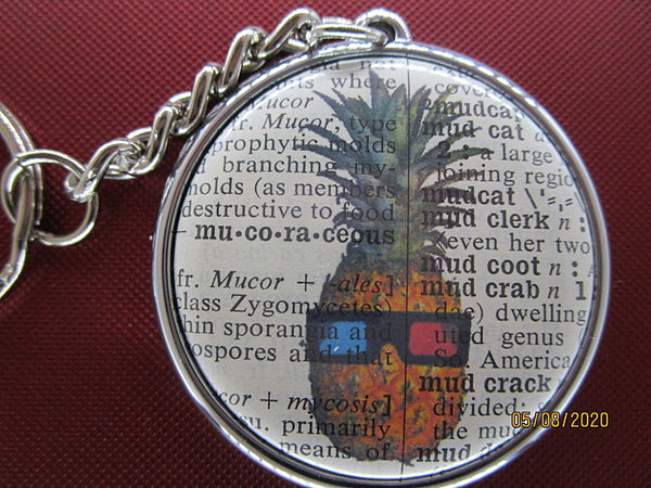 Pineapple Keyring No.8, botanical