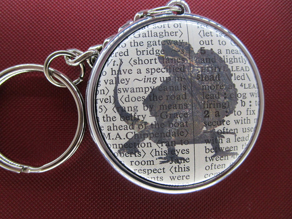 Frilled Neck Lizard Keyring No.308, animals