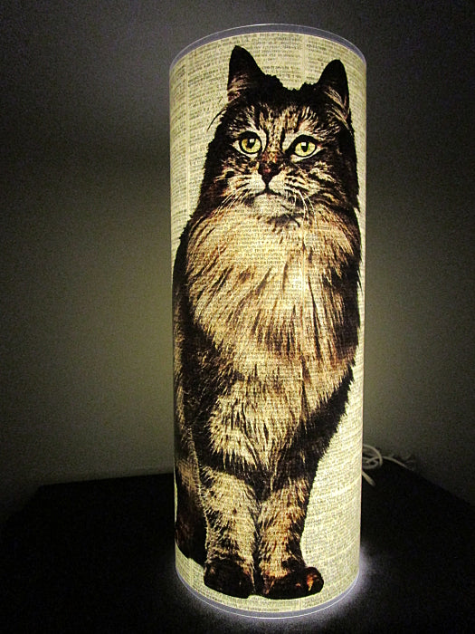 Norwegian Forest Cat #2 Paper Lantern No.82