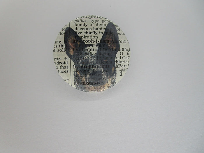 Blue Heeler Dog #4 Button Badge No.783