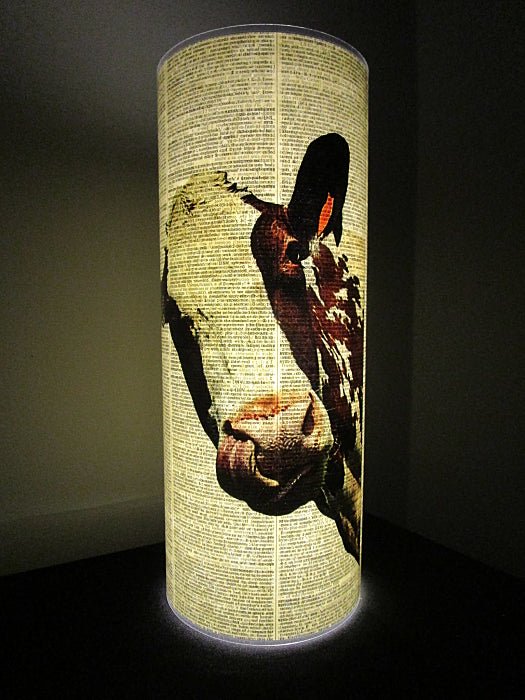 Cow Peeking Paper Lantern No.935, animal
