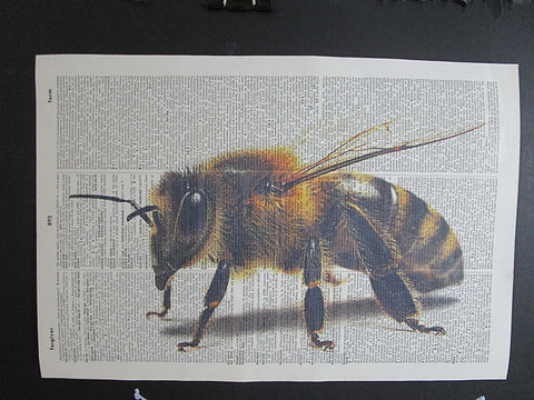 Bee Wall Art No.1042