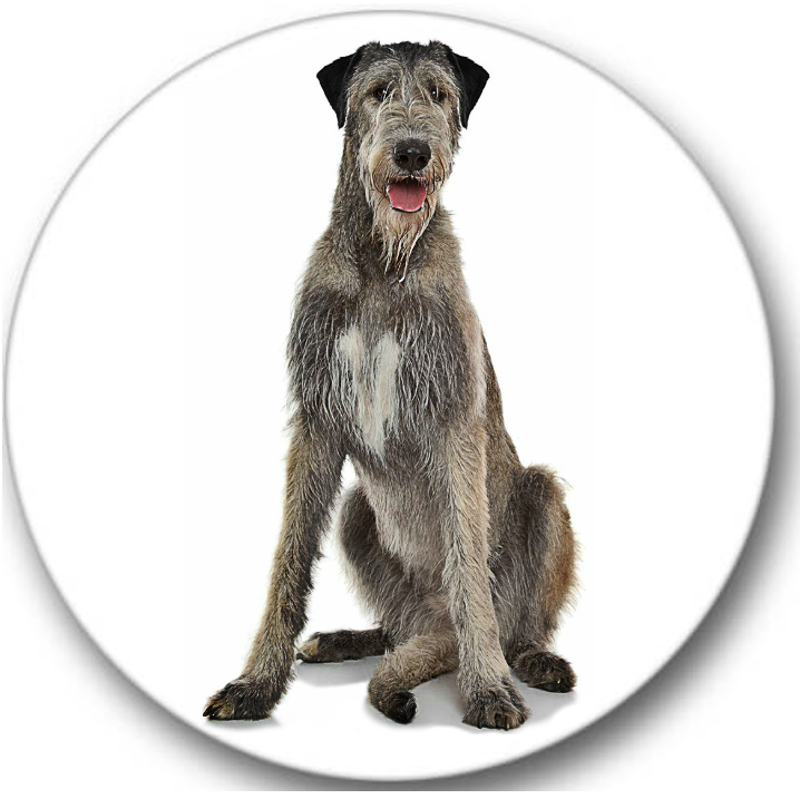Irish Wolfhound Dog #02 Sticker Seals No.162