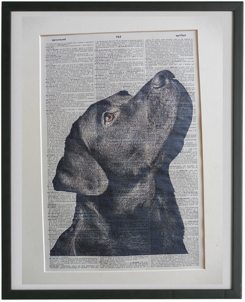 Labrador Black Dog #1 Print No.854