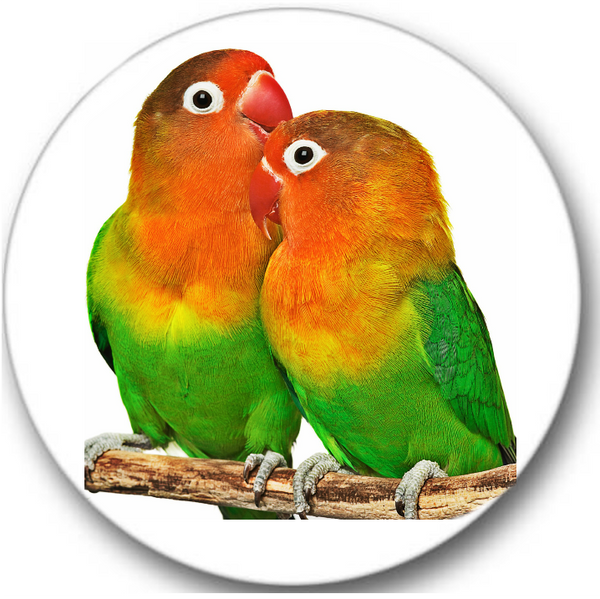 Lovebirds Sticker Seals No.555, bird prints