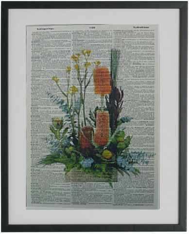 Australia Native Flowers Print No.67, botanical