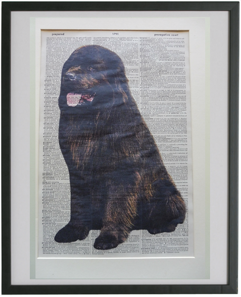 Newfoundland Dog #3 Wall Art No.862