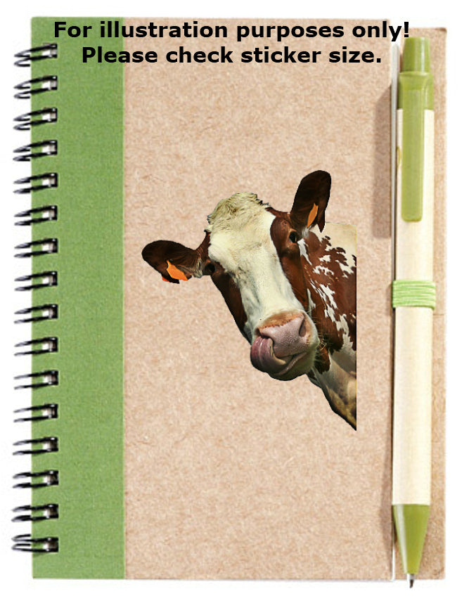 Cow Peeking Sticker No.935, animals
