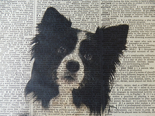 Border Collie Dog 1 Print No.3