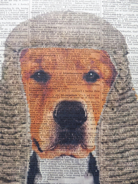 Golden Retriever Dog Print No.218