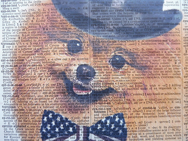 Pomeranian Dog Print No.467