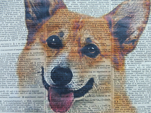 Corgi Dog Print No.470