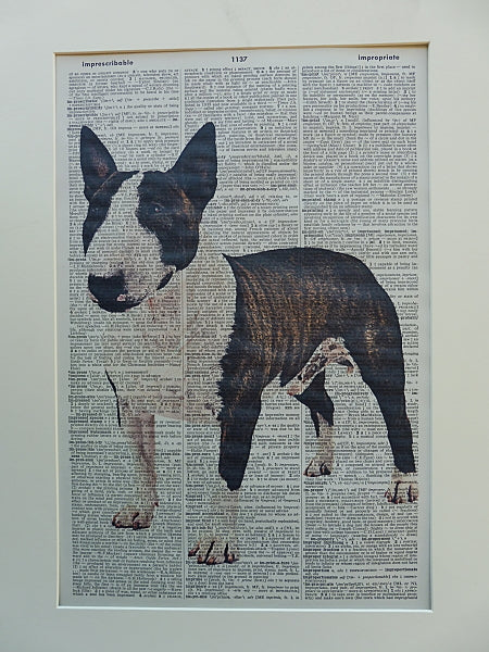 Bull Terrier Dog #1 Print No.536