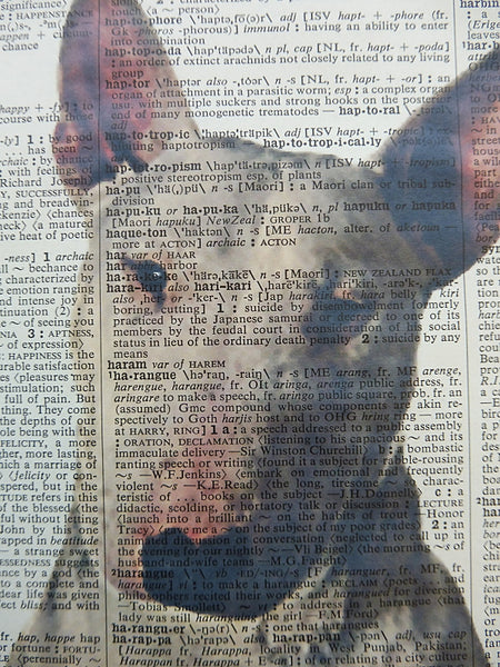 Bull Terrier Dog Print No.537