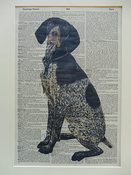 German Shorthaired Pointer Dog Print No.579