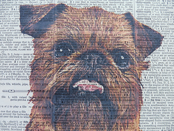 Brussels Griffon Dog Print No.577
