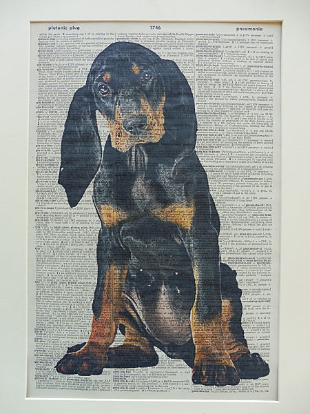 Black and Tan Coonhound Dog Print No.576