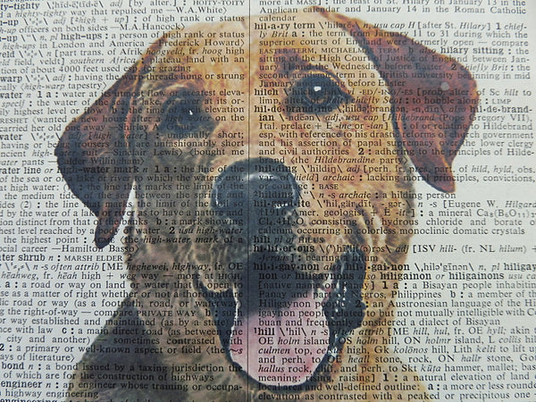 Labrador Dog Print No.593