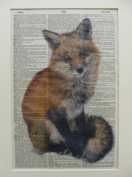 Fox #2 Wall Print No.60, animals