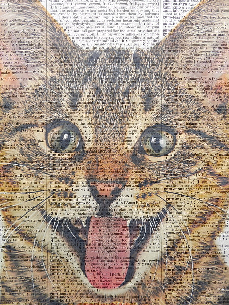 Tabby Cat With Hamburger Wall Print No.275