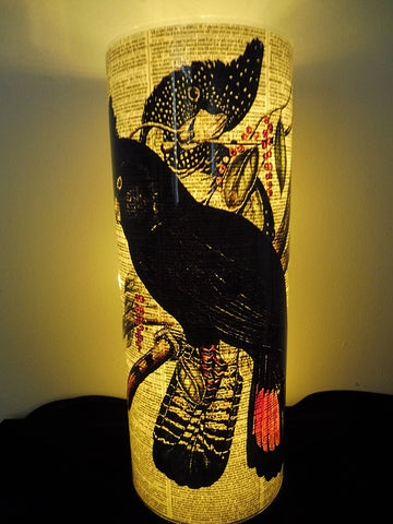 Black Cockatoo Lantern No.449, bird prints