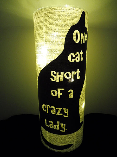 Crazy Cat Lady Paper Lantern No.20