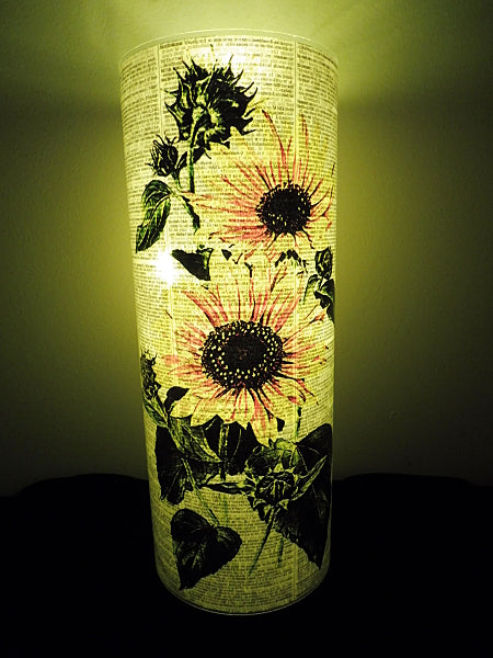Sunflowers Lantern No.50, botanical