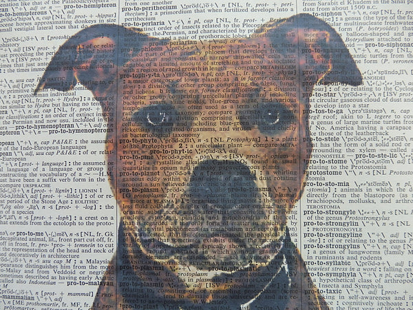 Staffordshire Bull Terrier Dog #2 Print No.175
