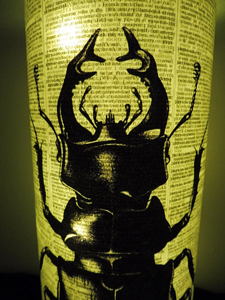 Stag Beetle Lantern No.296, botanical