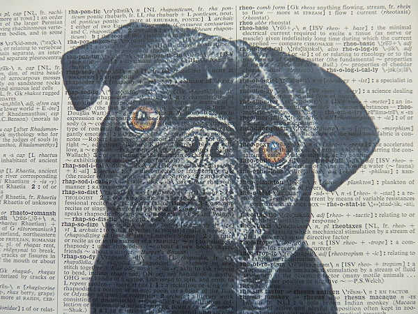 Pug Dog #4 Wall Art No.433