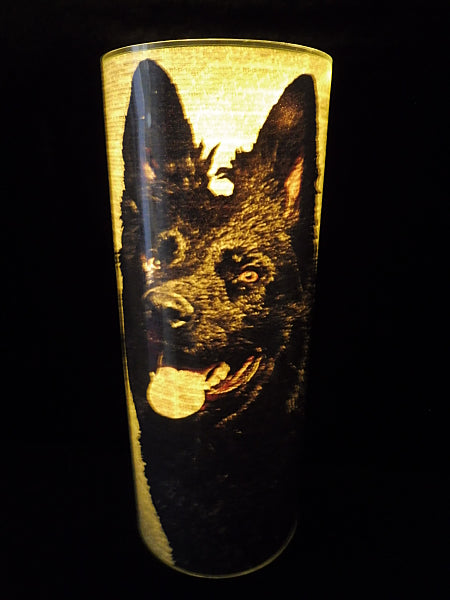 German Shepherd Dog #3 Lantern No.489
