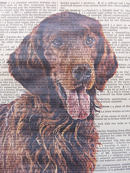 Irish Setter Dog Print No.606