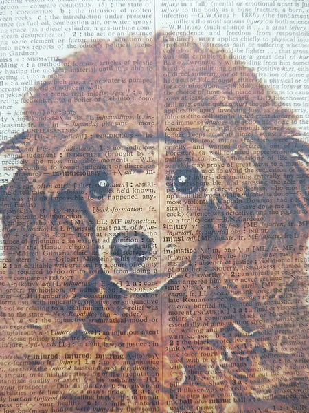 Poodle Dog #2 Wall Art No.789