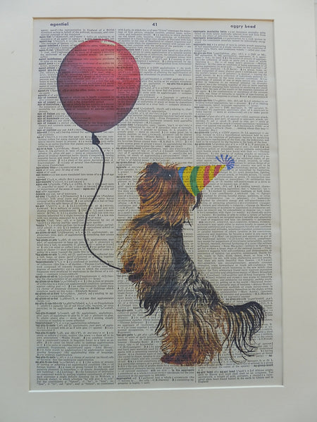 Australian Silky Terrier Dog #5 Print No.1