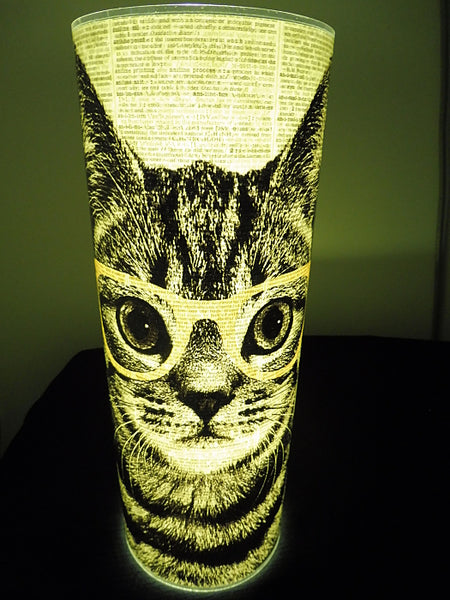 Tabby Cat Wearing Yellow Glasses Paper Lantern No.210