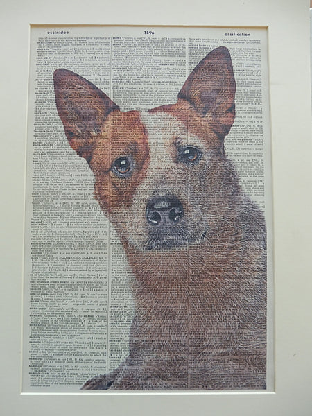 Red Heeler Dog #1 Wall Print No.832