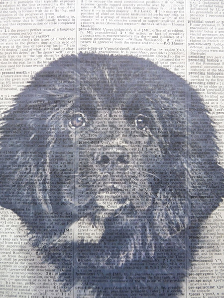 Newfoundland Dog #2 Wall Art No.863