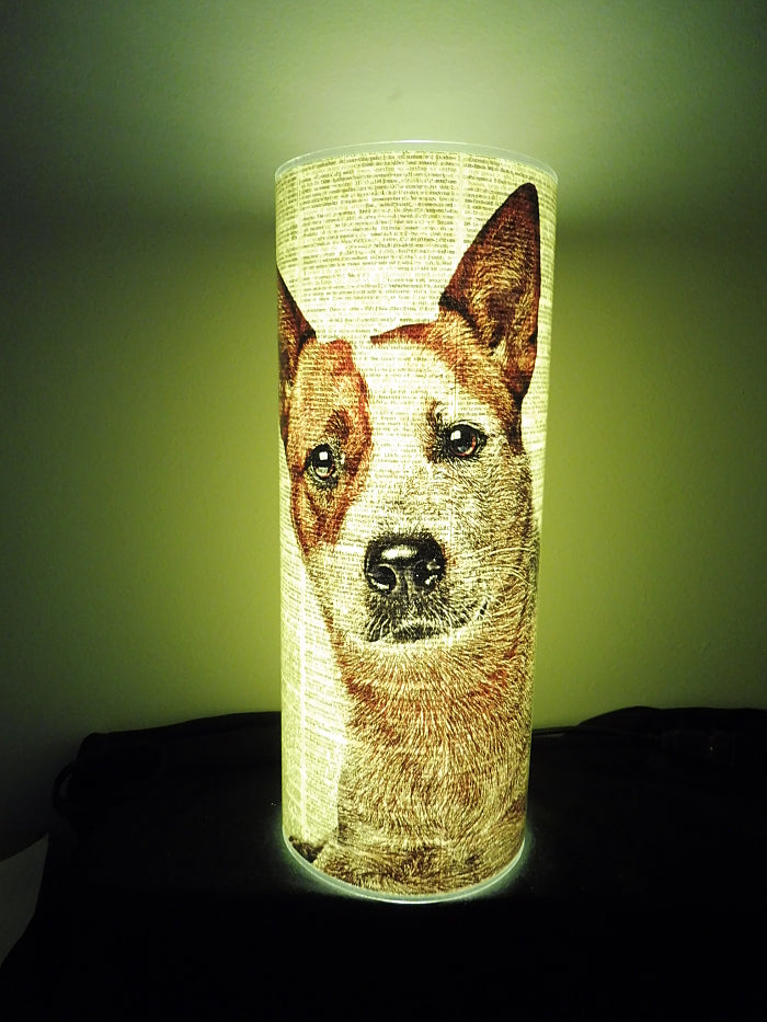 Red Heeler Dog #1 Paper Lantern No.832